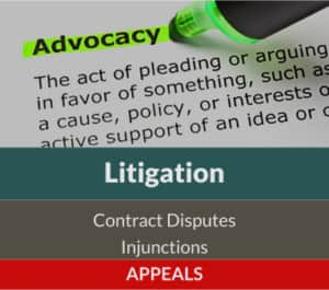 litigation, contract disputes, injunctions, appeals